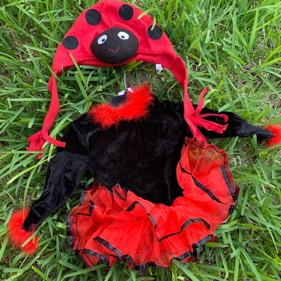 Other - Rubie's ladybug